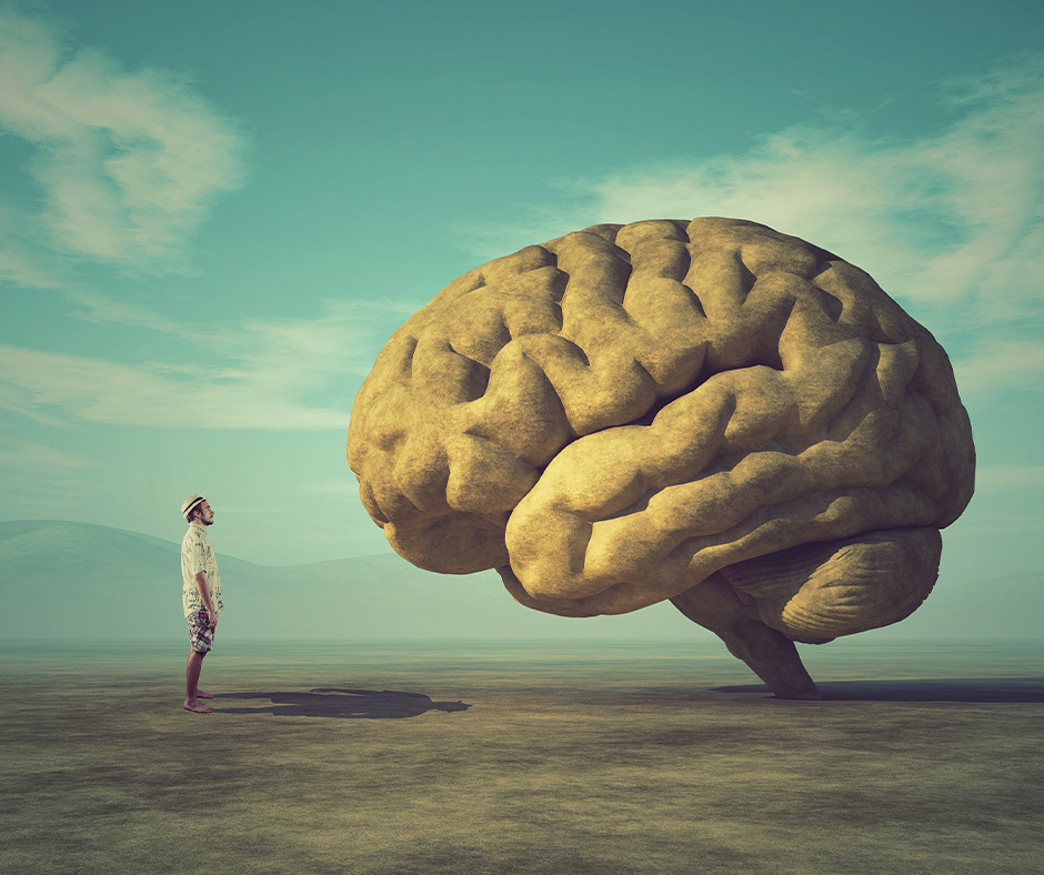 Gut and Brain health